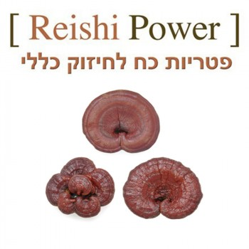 Reishi Power - 90 Capsules