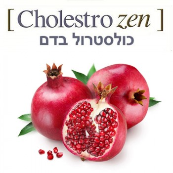 Cholestro Zen 100ml