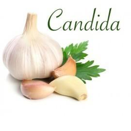 candida_1.jpg